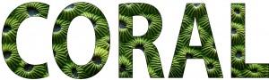 Krutikov-ID-Job3-coral
