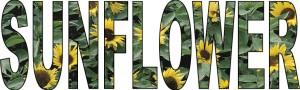 sunflowers-example4